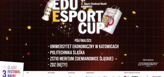 EEC_SFN2019polfinalisci