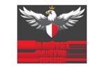 NARODOWA DRUZYNA ESPORTU_ pl